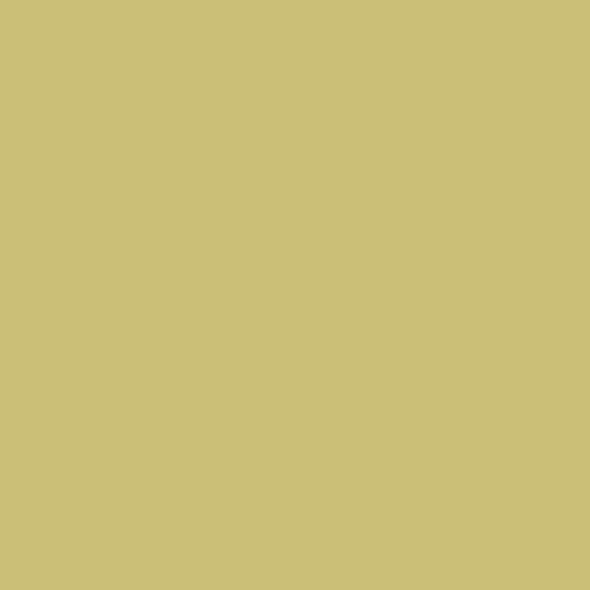 抗菌板/BJF-KJ003 朝鮮薊